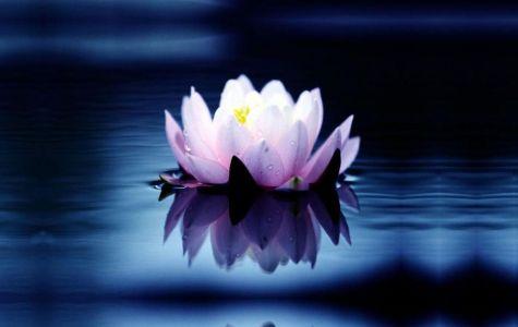 Spirituality_475x300