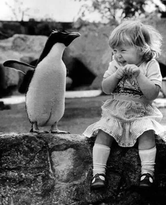 niña y pingüino